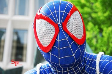 Captain Spiderman (4) by Shecktor-Photography