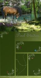 Pixel Studios Layout Contest by LeatherHearts