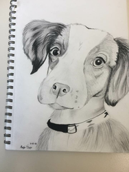 Puppy Drawing by ExploreYourCuriosity