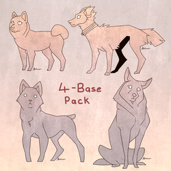 4-Base Pack by Akirow