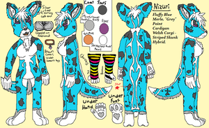 Nizuri Reference Sheet by Keikoku147