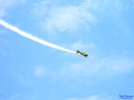 T-6 Texan In Flight by averybe