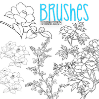 Pack De Brushes para photoshop by tutorialescrazy