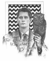 The Owls Are Not What They Seem by MaryTL
