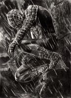 Spiderman by Anthony-Woods