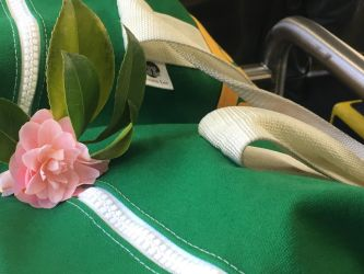 Camellia on Bus (4) by Clare-Prime-of-Ultra