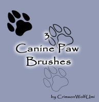 Canine Paw brushes by CrimsonWolfSobo