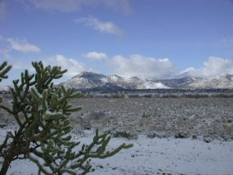 Snow in the High Desert by rosswright