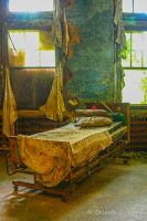 Abandoned Mental Asylum, Bed by cjheery