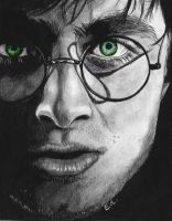 Harry Potter drawing by manueee