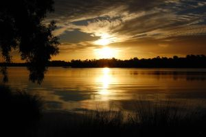 Canning River reflections III by westaussie