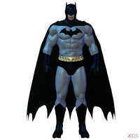 BAK - Batman (PreNew52) by MrUncleBingo