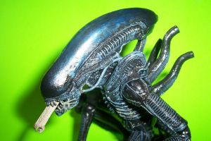 7-Inch Scale Xenomorph Warrior Dome Accessory by Drakhand006
