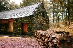 Charcoal Burners Cabin by welshbeck