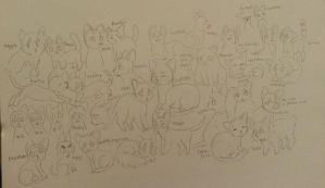 me and my friends 30 something cats by pawpplio