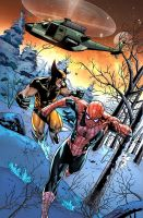 Spiderman and Wolverine by TeoGonzalezColors