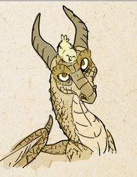 A lovely dragon by sidca