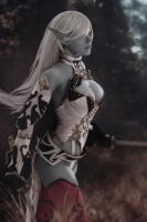 Lineage II - Dark Elf by RayneRg