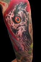 owl by scoot75