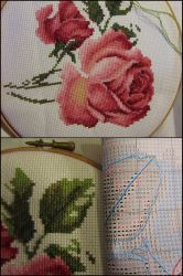 Rose cuttings wip by Santian69