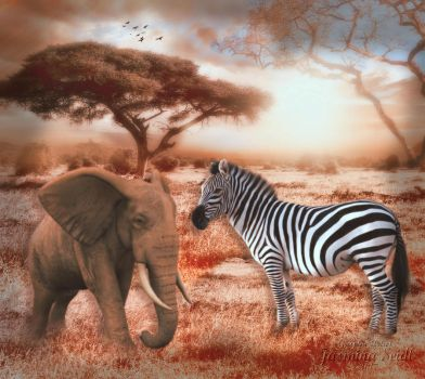 Rendezvous in Afrika by Jassy2012