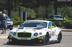 Bentley GT3 by Attila-Le-Ain