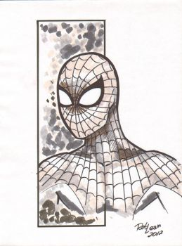 Spiderman by Robinker