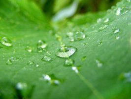 water_drops_06 by Club-Romania
