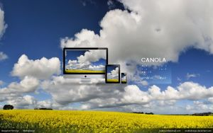 Canola Wallpaper by MediaDesign