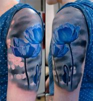 Blue poppies by grimmy3d