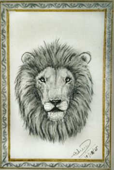 Lion drawing by anoop112