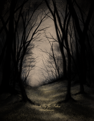 Forest by JPMNeg