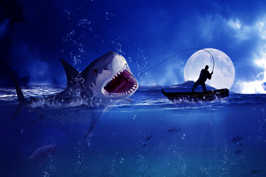Fisherman and the Shark by Kylee-DC