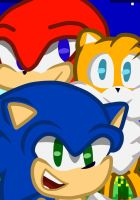 Sonic 25th Anniversary fanart: Sonic Heroes by MoreSeed