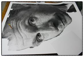 Gary Oldman drawing wip(3) by sharppower