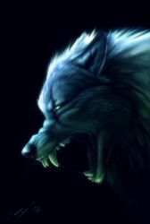 Snarling wolf by T0xicEye