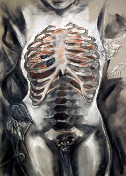 butterfly ribcage by Saffy-in-the-Clouds