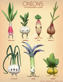 Onion Identification Guide by Whip-o-will