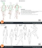 Walking and running poses ref and tutorial by XiaTaptara