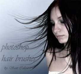 hair brushes by WCS-Wildcat