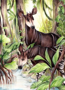 ACEO #118. - #119. Okapi in the jungle by Zeolith