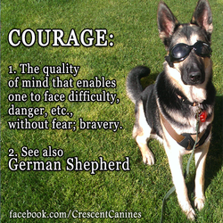 LakodaQuotes What is Courage by RavynCrescent
