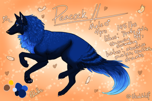 Peacock Reference Sheet by VexiWolf