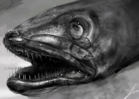 Study: Fish Head by LindseyWArt
