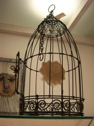 cage by anatolto