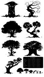 Tree Silhouettes and Heights by monokroe