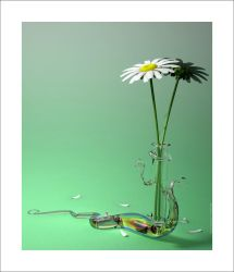 The Naturficial White Flowers by playmobil