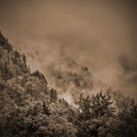 after the rain by crh