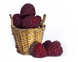 Berry Basket 01 by NellyGraceNG