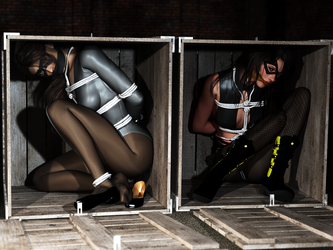 Rook and Fightgirl -  Boxed In by fightgirl2004